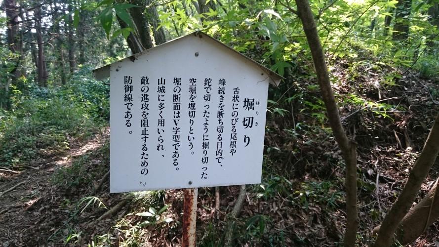 松井田城跡