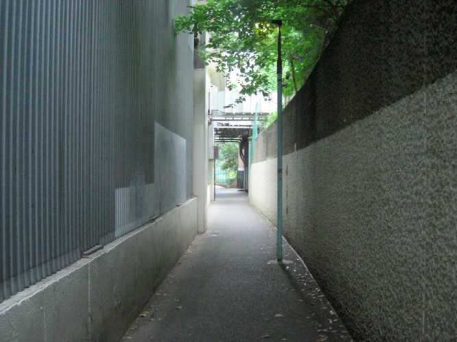 白金トンネル 側道