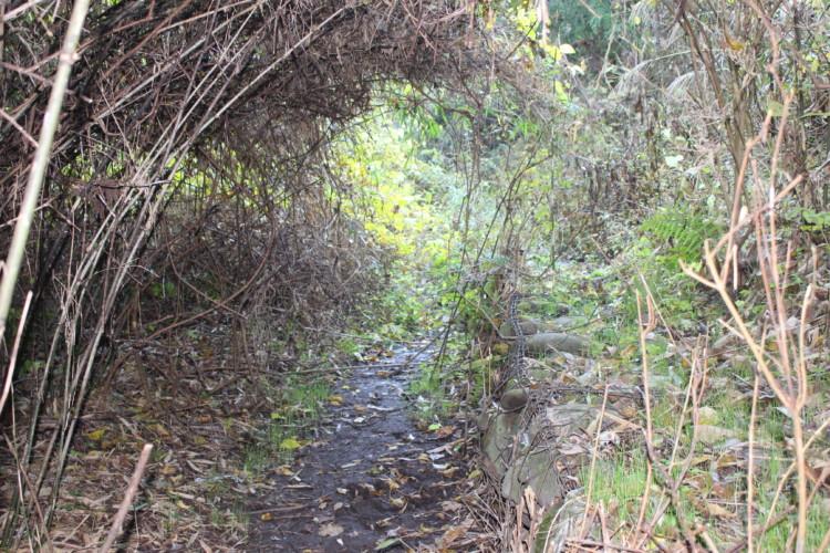 矢板トンネル