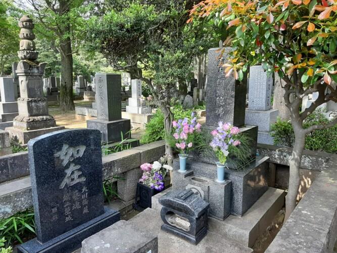 雑司ヶ谷霊園